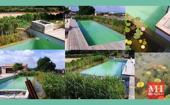 piscinas ecolgicas mirada h - Piscinas Ecologicas